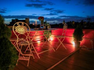 Unique Penthouse - Romantic Central Terrace Studio - Paris vacation rentals