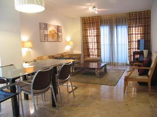 Wonderful Apartment with wifi close to Ciudad de las Ciencias - Alzira vacation rentals