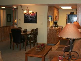 Ski In / Ski Out 2 Bedroom Steamboat Condo - Steamboat Springs vacation rentals