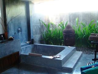 huge and beautiful 7 bedrooms villa in nature - Bali vacation rentals