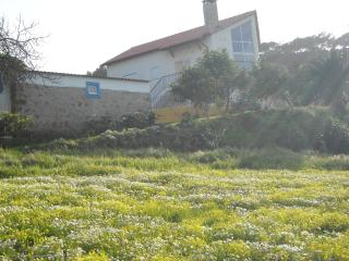 Ericeira - Country house with pool - Santo Isidoro vacation rentals