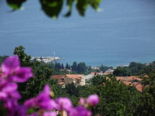 Apartment Babiloni near Opatija - Kvarner and Primorje vacation rentals