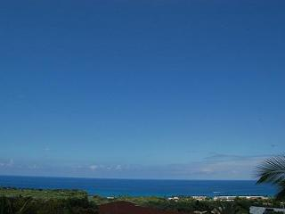 Whalewatch Home - Big Island Hawaii vacation rentals