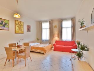 Van Gogh's apartment - Czech Republic vacation rentals