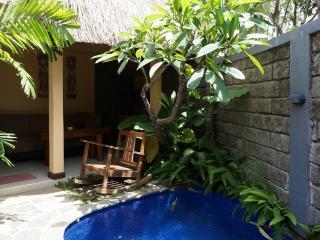 One Bed room Pool Villa Residence Rental - Ubud vacation rentals