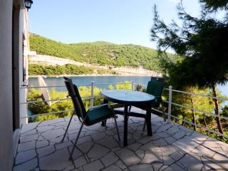 Apartments Josip - 53501-A5 - Saplunara vacation rentals
