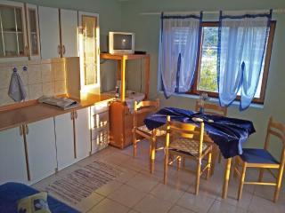 Villa Paradise - V2211-K1 - Vela Luka vacation rentals