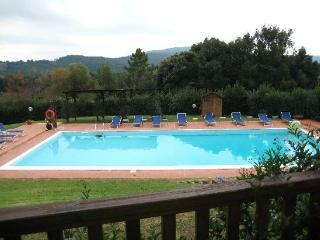 Florence & Siena all around - Montignoso vacation rentals