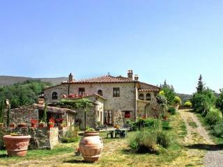 Poggio Velluto ~ RA35202 - Castel Del Piano vacation rentals