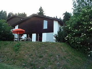 Casa Encian ~ RA11645 - Image 1 - Breil/Brigels - rentals