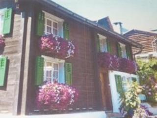 Casa Laghet ~ RA11634 - Image 1 - Breil/Brigels - rentals