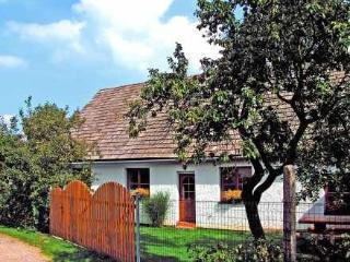 Chrastov ~ RA12448 - Horni Cerekev vacation rentals