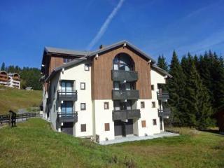 Combes Blanche 1 & 2 ~ RA27819 - La Clusaz vacation rentals