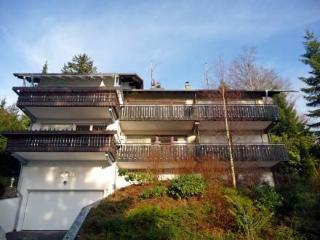 Haus Ortenaublick ~ RA13287 - Sasbachwalden vacation rentals