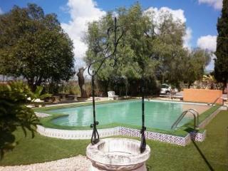 Casa Vegas ~ RA19273 - Antequera vacation rentals