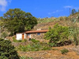 Casa Los Castaños ~ RA19552 - Teror vacation rentals