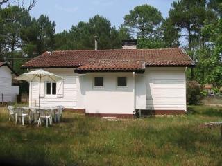 Ajoncs 1 ~ RA25775 - Mimizan vacation rentals