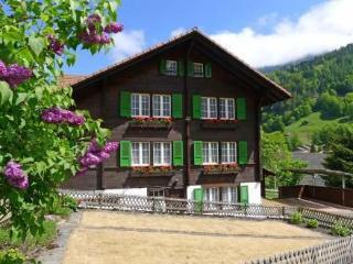 Chalet Pironnet ~ RA10116 - Lauterbrunnen vacation rentals