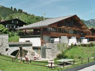 FSG01 ~ RA10108 - Jungfrau Region vacation rentals