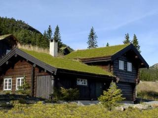 Kvitfjell ~ RA39238 - Eastern Valleys vacation rentals