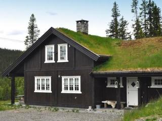 Kvitfjell ~ RA39237 - Eastern Valleys vacation rentals