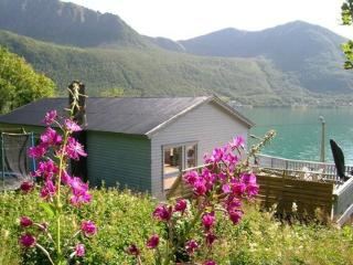 Senja ~ RA38991 - North Norway vacation rentals