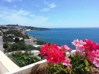 Sun & sea terrace ~ RA36065 - Castro vacation rentals