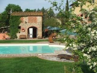 Casa Tara ~ RA35281 - San Giustino Valdarno vacation rentals