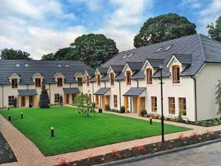 Heyward Mews ~ RA32544 - County Dublin vacation rentals