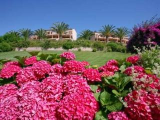 I Cardellini ~ RA29357 - Sari-Solenzara vacation rentals