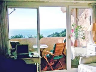 Les Sources ~ RA29331 - Brando vacation rentals