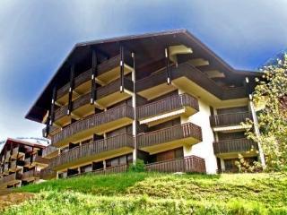 Le Corina ~ RA28065 - Chatel vacation rentals