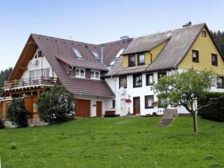 Erdgeschoss ~ RA13363 - Bubenbach vacation rentals