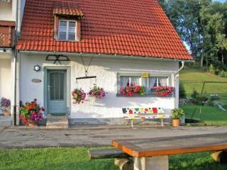 Holzhauerhus ~ RA13309 - Braunlingen vacation rentals