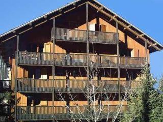 Le Grand Sud ~ RA27605 - Meribel vacation rentals