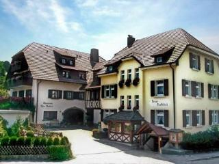 Wohnung 10 ~ RA13463 - Black Forest vacation rentals