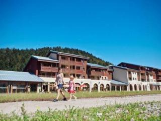 Résidence Les Grandes Feignes Labellemontagne T 3 6 pax ~ RA26257 - La Bresse vacation rentals