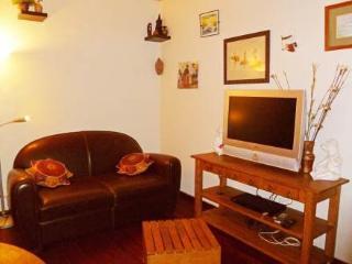 20 rue Théodore Deck ~ RA24554 - Vanves vacation rentals