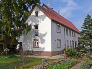 Haus Kuttruff ~ RA13375 - Wutach vacation rentals
