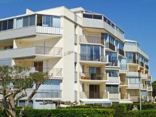 Le Californie ~ RA26376 - Le Grau Du Roi vacation rentals