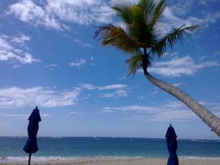 Luxurious Secure 3BDRM Penthouse Beach/Golf Condo - Puerto Plata vacation rentals