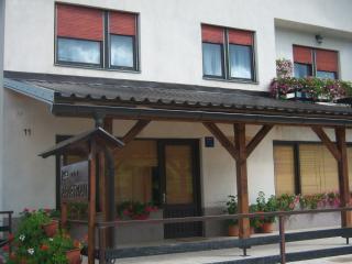 Dobrodošli u prelijepi dio Gorskog kotara - Vrbovsko vacation rentals