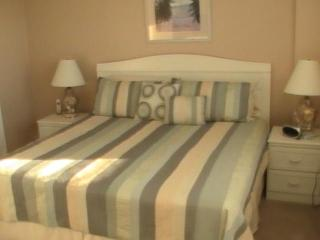 Oceanfront Luxury Penthouse Vacation Condo, Myrtle - Myrtle Beach vacation rentals