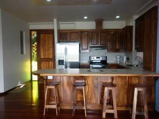Arenal Maleku Luxury Condominiums 12-2-2-1 - Washington vacation rentals