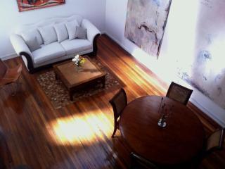Superb Fully Restored 3Bdrm Apt 103 Terrace BBQ - Montevideo vacation rentals
