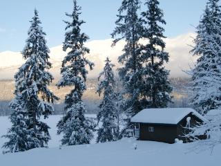 Perfect Cabin with Internet Access and Central Heating - Haines vacation rentals