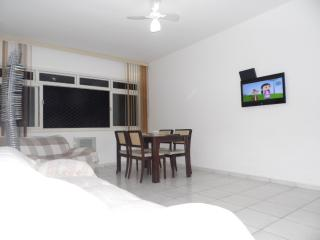 2 bedroom Apartment with Internet Access in Santos - Santos vacation rentals