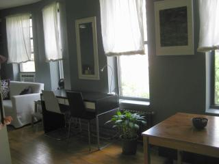 Sunny, trendy downtown studio in Manhattan's Union - New York City vacation rentals