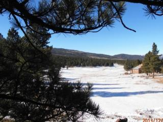 Bright 4 bedroom Condo in Angel Fire - Angel Fire vacation rentals