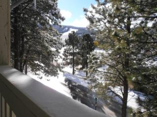 Nice 4 bedroom Condo in Angel Fire - Angel Fire vacation rentals